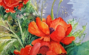 Love those Poppies - watercolour - SOLD